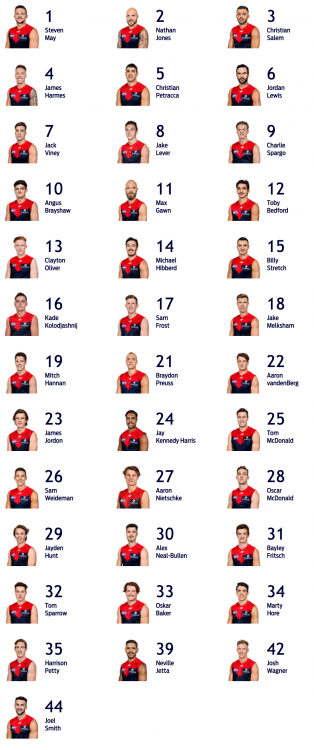Screenshot_2019-10-07 Senior Players - melbournefc com au(1).png