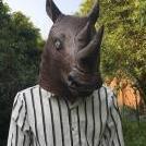 Diablo Rhino